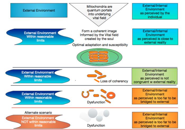 Mitohondrije kao bioenergetski portali - Anksioznost veza